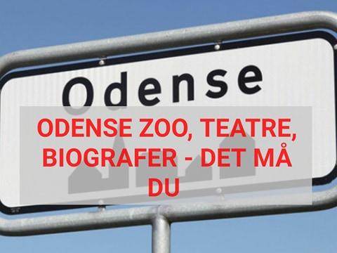 Her er retningslinjerne for genåbning af zoologiske haver, teatre, biografer samt mere